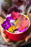 Colorful leaves and flowers on the ceramic bowl in the hand Royalty Free Stock Photos