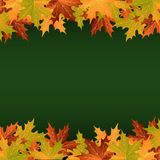 Colorful leaves on a green background. Red, green and yellow autumn leaves isolated on a green background Royalty Free Illustration