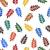 Colorful leaves pattern. Stock Photography