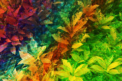 Colorful leaves. In refulgent background Stock Images