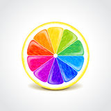 Colorful lemon creative concept vector Royalty Free Stock Photography