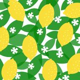 Colorful Lemon Pattern - vector eps10. Colorful Pattern With Lemons, Leaves and Flowers - vector eps10 Royalty Free Stock Image