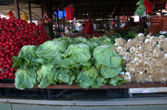 Colorful lettuce, onions, radishes on market stall in Belgrade, Serbia Royalty Free Stock Images