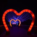 Colorful Lights Gardens by the Bay Singapore Royalty Free Stock Photos