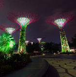 Colorful Lights from Towers of Gardens by the Bay in Singapore Stock Photo