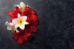 Colorful lily flowers Stock Photo