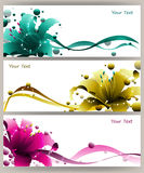 Colorful lily vector Stock Photo