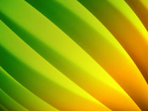 Colorful Lines. Colorful curves lines of lamp Stock Photo