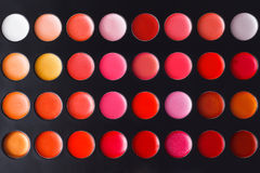 Colorful lip palette Stock Images
