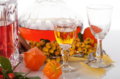 Colorful liqueurs from fruits Royalty Free Stock Photos