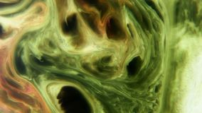 Colorful liquids mixed together to an abstract painting stock video