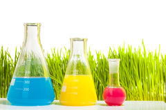 Colorful liquids in three different test tubes. Colorful liquids in three different of size test tubes standing in a row according to the height on the Stock Photos