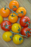 Colorful little tomatoes Stock Image