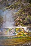 Colorful little travertin terrace in Waimangu valley in New Zealand. Rotorua geothermal area in New Zealand, hot springs tourism, volcanic adventure in stock photo