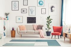 Colorful living room interior. Red chair and blue carpet near couch in colorful living room interior with ficus and posters stock photography