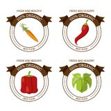 Colorful logos set of fresh and healthy organic food with chilli carrot lettuce and peppers. Vector illustration Royalty Free Stock Photos