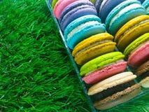 Colorful Macaron. Stock Photos