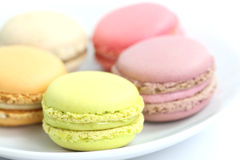 Colorful Macaron in close up Stock Images