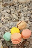 Colorful of macaron on a glass plate Royalty Free Stock Image