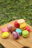 Colorful of macaron on the tray of brown wood. Royalty Free Stock Photography