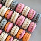 Colorful macaroons background. Stock Photography