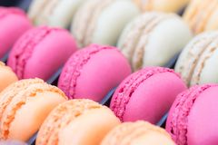 Colorful macaroon cake in the box. Stock Photos