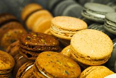 Colorful macaroon cakes stock images