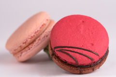 Colorful macaroon on white background. Macaron or Macaroon is s royalty free stock images