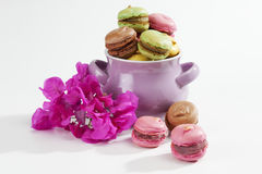 Colorful macaroons in bowl and blossom Royalty Free Stock Images