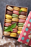 Colorful macaroons in a box Stock Image