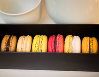 Colorful macaroons in different flavor Royalty Free Stock Photography