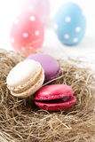 Colorful macaroons and Easter eggs Stock Photos