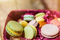Colorful macaroons and flowers on wooden table. Sweet macarons i stock images
