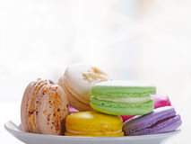 Colorful macaroons on plate Royalty Free Stock Images