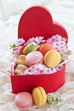 Colorful macaroons in red box Stock Images