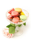 Colorful macaroons and rose Royalty Free Stock Photo