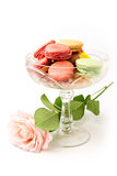 Colorful macaroons and rose Royalty Free Stock Photos