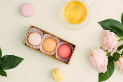 Colorful macaroons and rose flowers with tea on light green. Sweet macarons in gift box. Top view royalty free stock photos