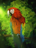 Colorful Macaw Parrot - Digital Painting. Digital painting of a colorful red macaw perched on a branch in a lush green jungle canopy Royalty Free Stock Photo