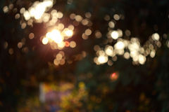 Colorful magical light festive background, abstract bokeh defocu Royalty Free Stock Photos