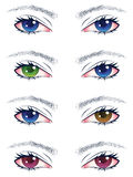 Colorful Male Eyes Royalty Free Stock Image