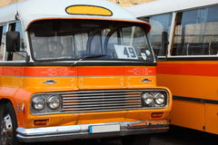 Colorful Malta Busses. Bright orange classic Maltese public buses parked side by side Royalty Free Stock Photos