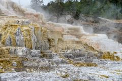 Colorful Mammoth Springs geothermal feature in Yellowstone NP royalty free stock images