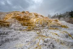Colorful Mammoth Springs geothermal feature in Yellowstone NP stock photo
