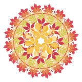 Colorful mandala with autumn leaves and branches on white background. Autumn bouquet. Royalty Free Stock Photo