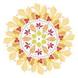 Colorful mandala with autumn leaves on white background. Autumn bouquet Royalty Free Stock Photography