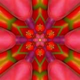 Colorful mandala, red, green and orange kaleidoscope of tulips. Colorful mandala kaleidoscope of tulips Stock Photo