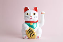 Colorful Maneki Nako. A Maneki-neko plastic cat, Symbolizing luck and wealth, on a pop and colorful background. Minimal color still life photography stock images
