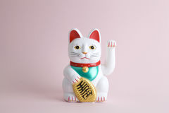 Colorful Maneki Nako. A Maneki-neko plastic cat, Symbolizing luck and wealth, on a pop and colorful background. Minimal color still life photography stock image