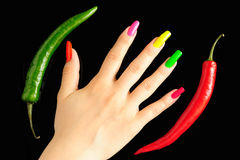 Colorful manicure with chili pepper. Colorful manicure on real nails with chili pepper Royalty Free Stock Image